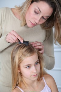 lice treatment and health schools act of 2000