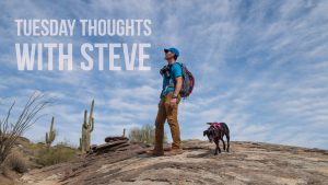Tuesday Thoughts With Steve
