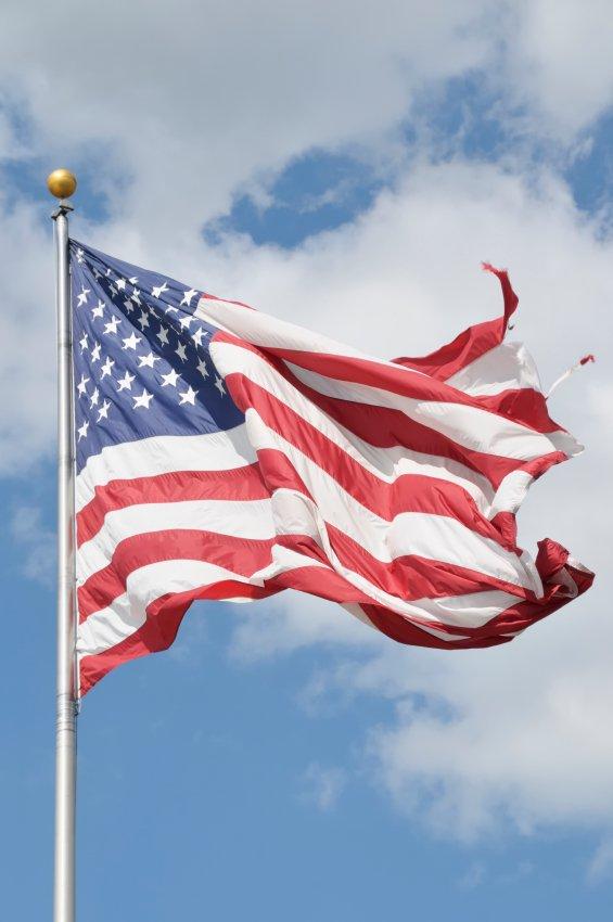 live oak freedom of speech flag case